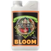 Bloom 1 L.