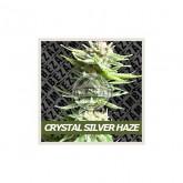 Crystal Silver Haze